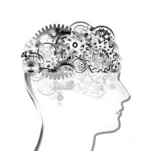 4-brain